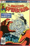 The Amazing Spider-man #205