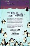 Adventure Time: Ice King Trade Paperback (Back Cover)